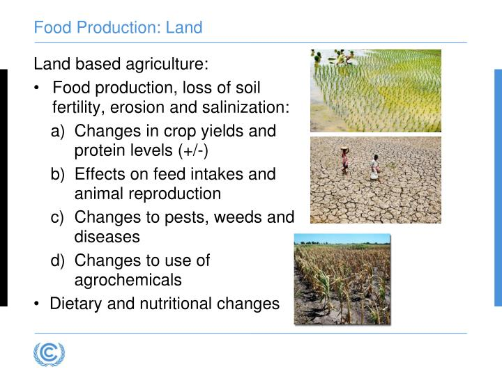 Food Production: Land