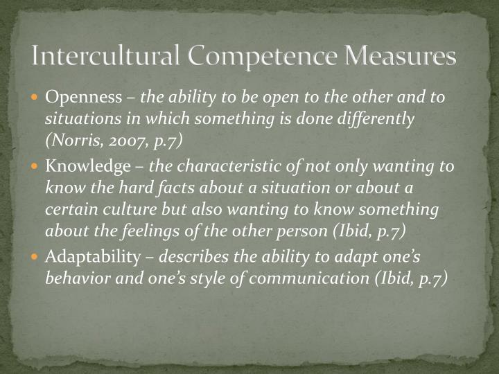 Intercultural Competence Measures