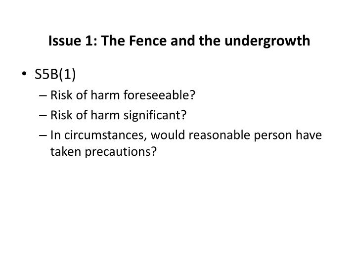 Issue 1: The Fence and the undergrowth