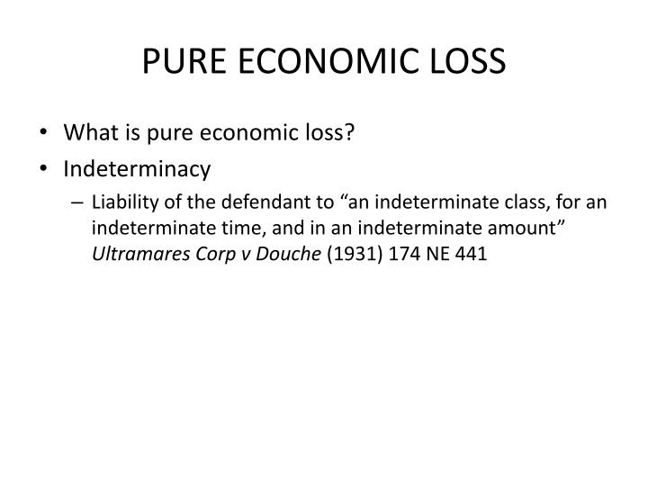 PURE ECONOMIC LOSS