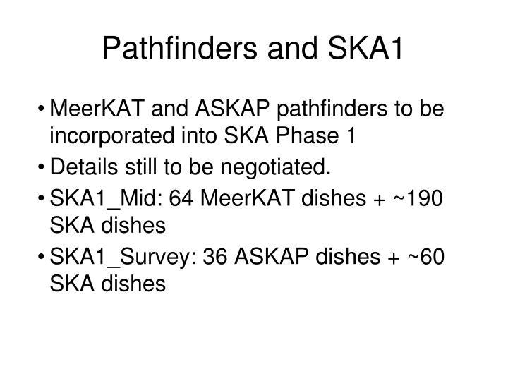 Pathfinders and SKA1
