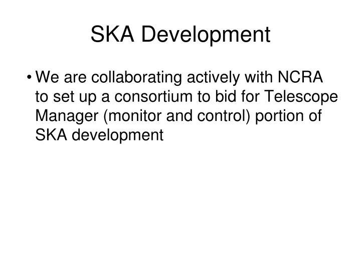 SKA Development