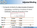 adjusted binding1