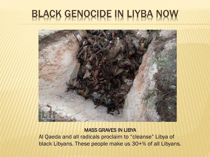 Black Genocide in