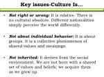 key issues culture is