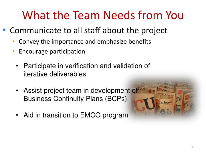 What the Team Needs from You