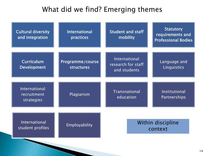 What did we find? Emerging themes