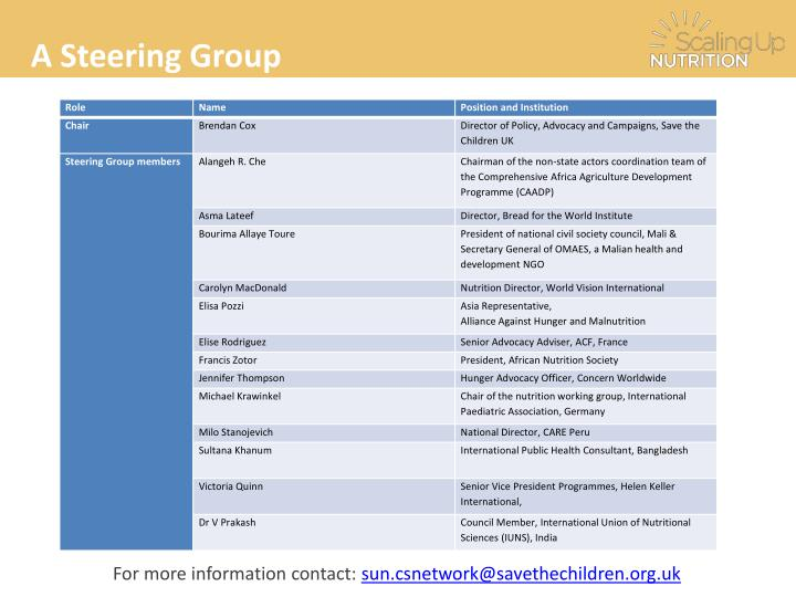A Steering Group