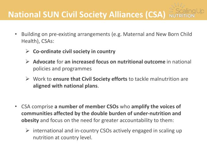 National SUN Civil Society Alliances (CSA)