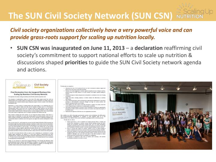 The SUN Civil Society Network (SUN CSN)