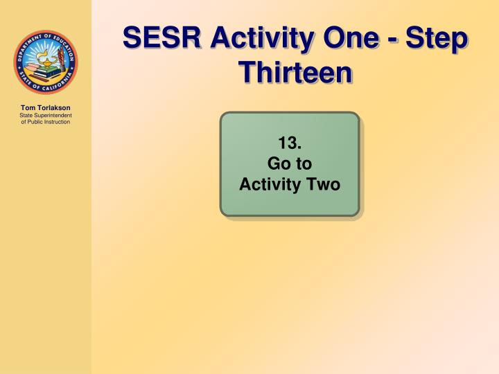 SESR Activity One - Step Thirteen