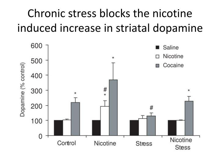 Chronic stress blocks the nicotine induced increase in striatal dopamine