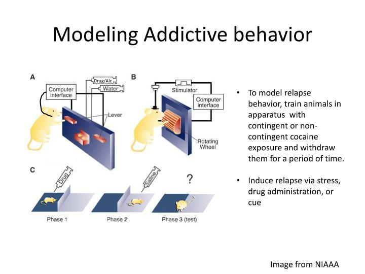 Modeling Addictive behavior