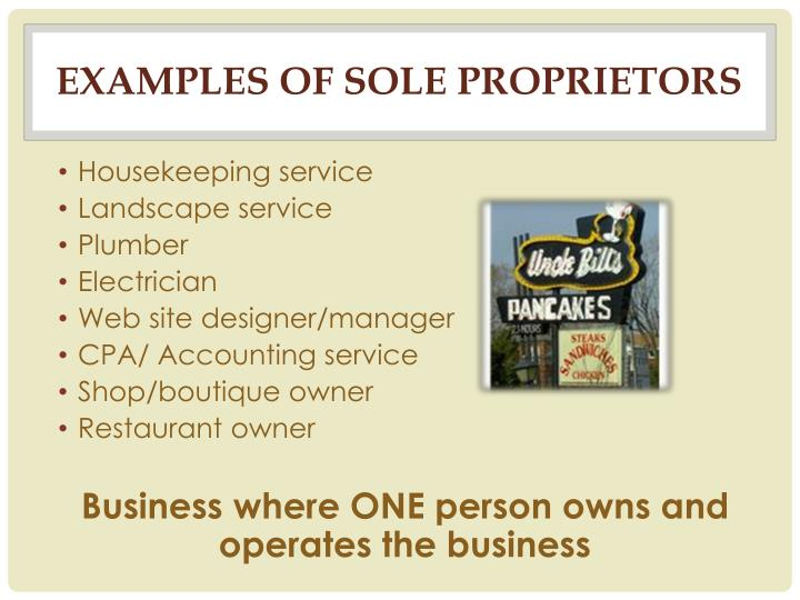Sole proprietorship business plan examples