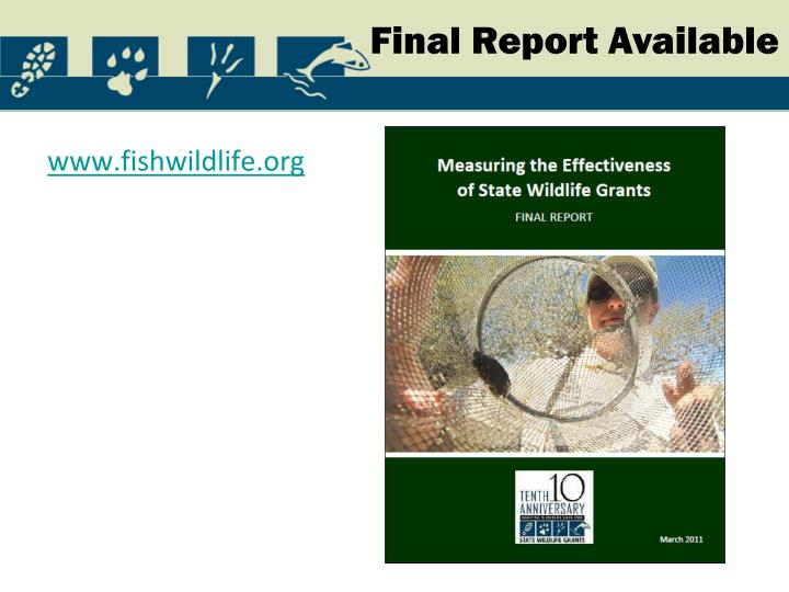 Final Report Available
