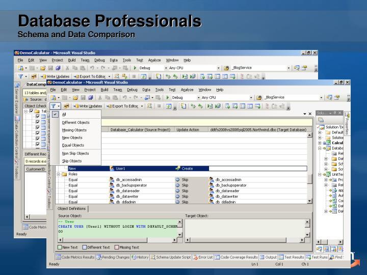 Database Professionals
