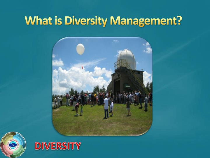 What is Diversity Management?