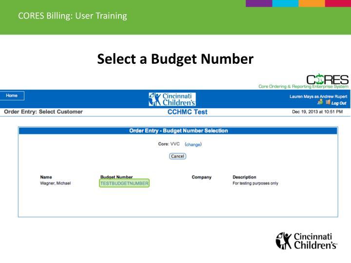 CORES Billing: User Training