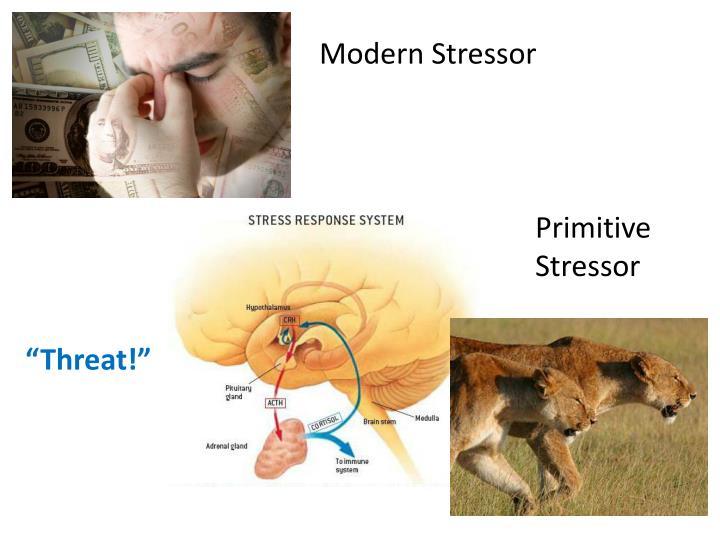 Modern Stressor
