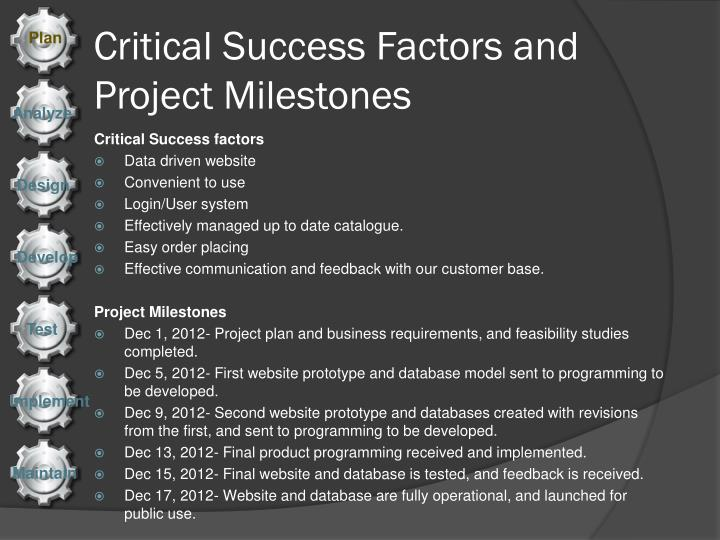 Critical success factors and project milestones
