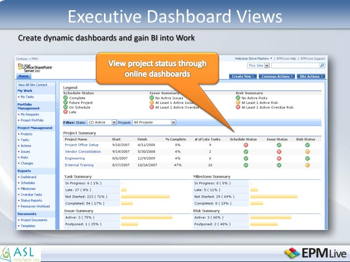 Executive Dashboard Views
