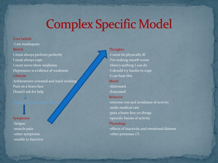 Complex Specific Model