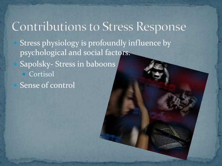 Contributions to Stress Response