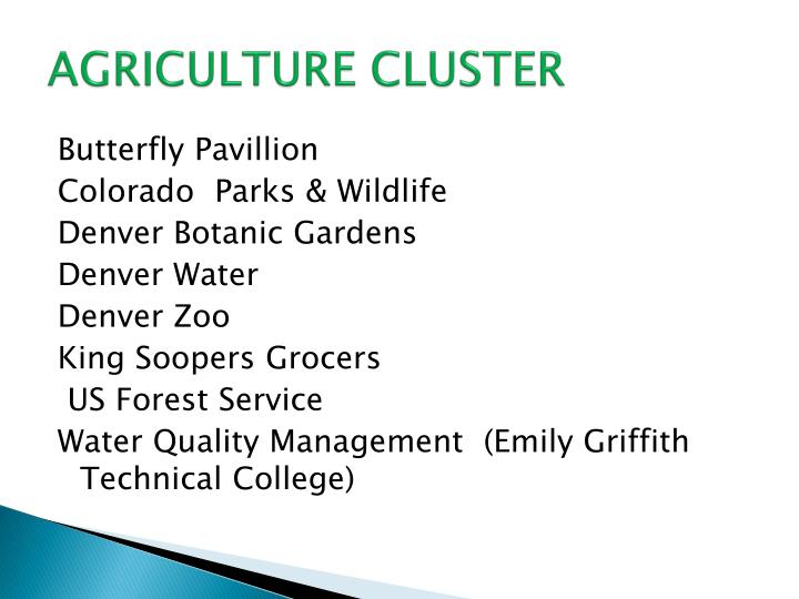 AGRICULTURE CLUSTER