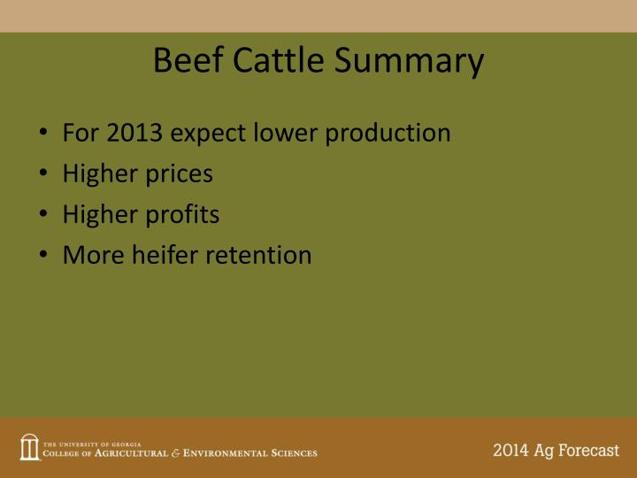 Beef Cattle Summary
