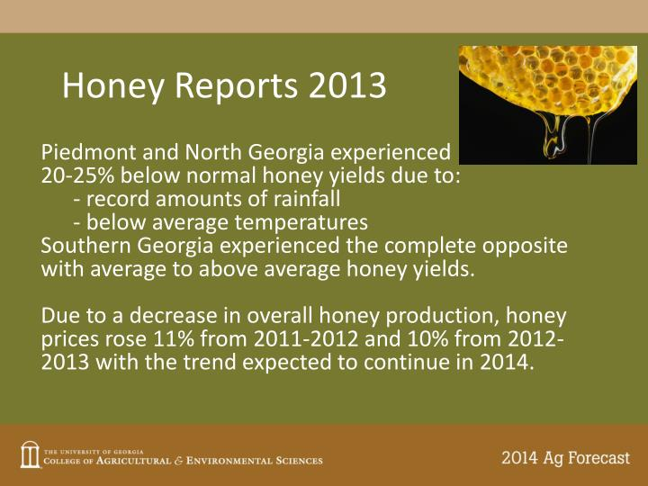 Honey Reports 2013