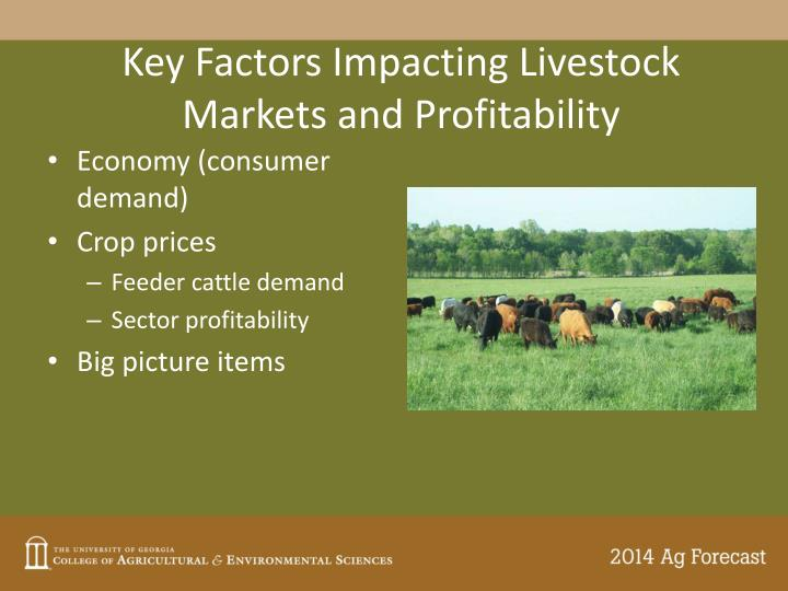 Key Factors Impacting Livestock Markets and Profitability