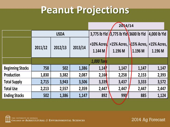 Peanut Projections