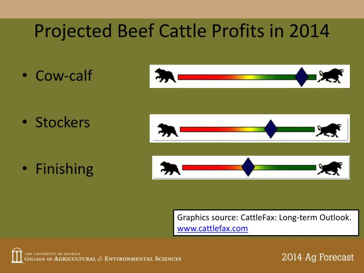 Projected Beef Cattle Profits in 2014