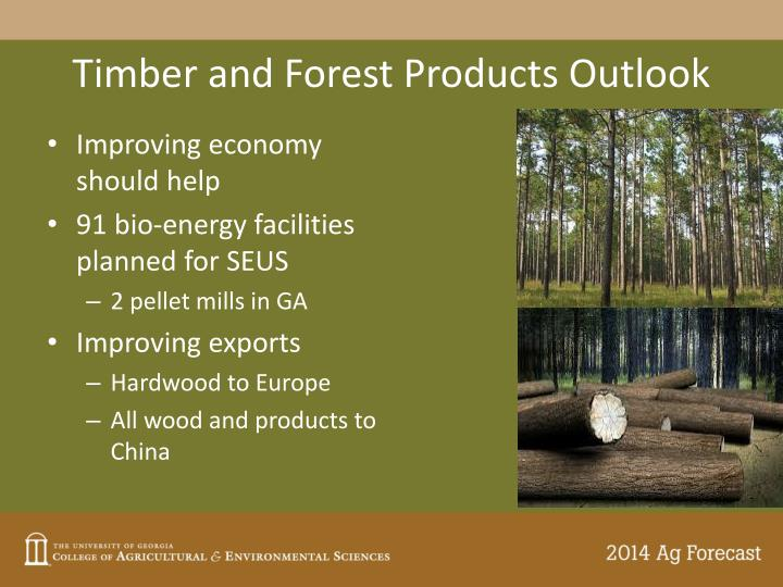 Timber and Forest Products Outlook