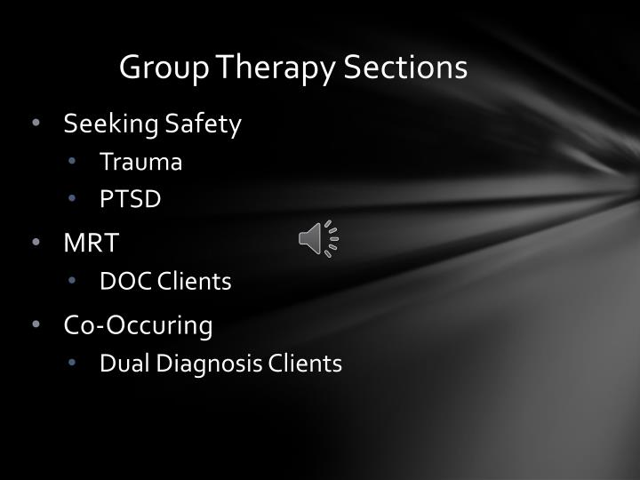 Group Therapy Sections