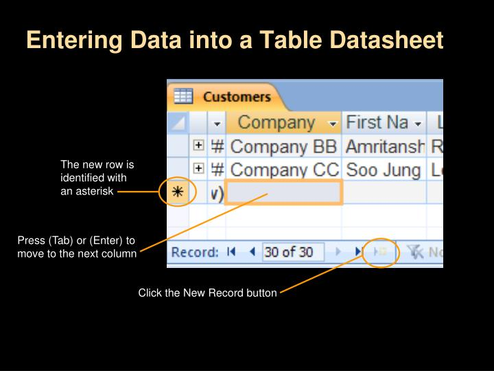 Entering Data into a Table Datasheet
