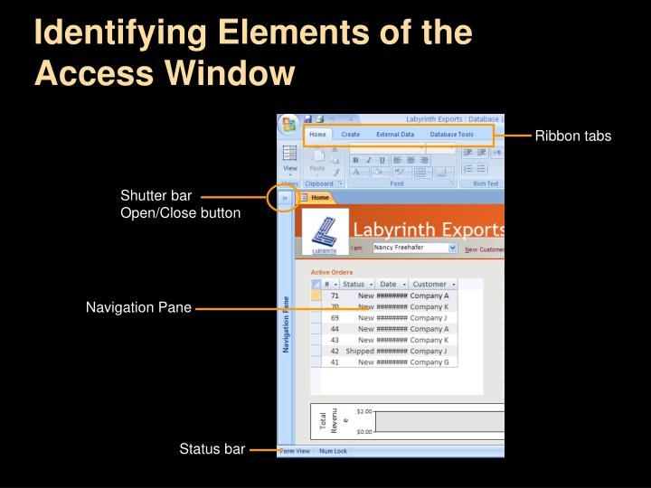 Identifying Elements of the Access Window