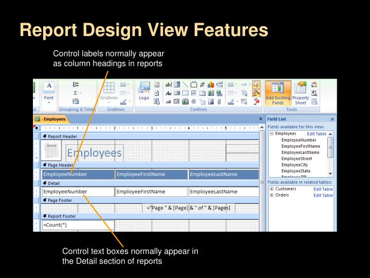 Report Design View Features