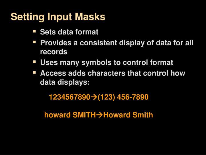 Setting Input Masks