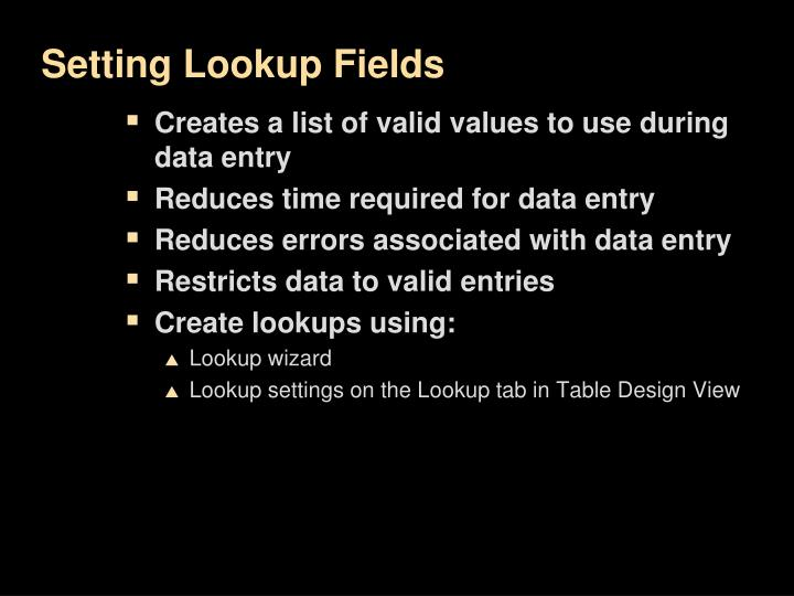 Setting Lookup Fields