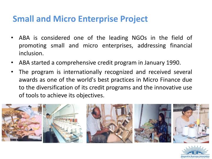 Small and Micro Enterprise Project