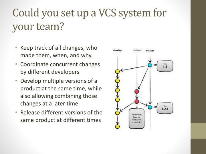 Could you set up a VCS system for your team?