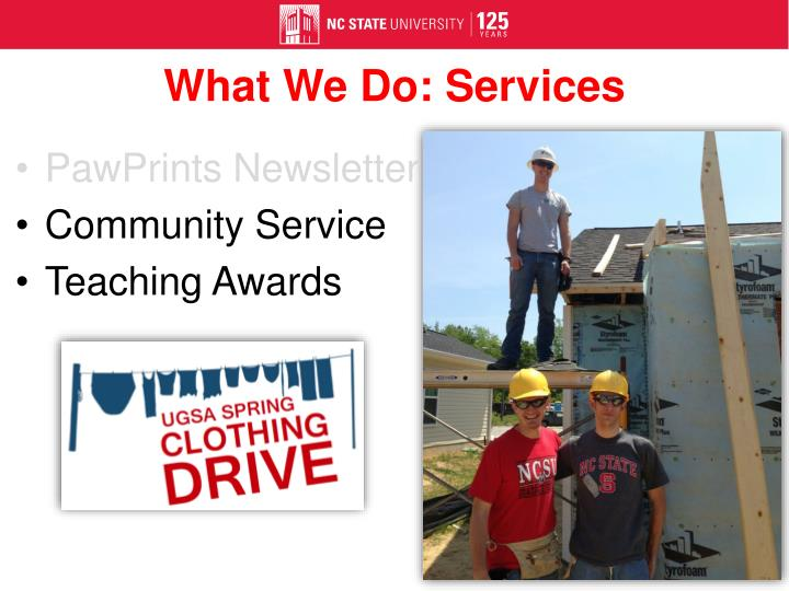 What We Do: Services