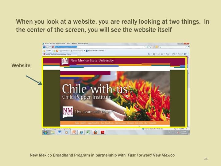 When you look at a website, you are really looking at two things.  In the center of the screen, you will see the website itself