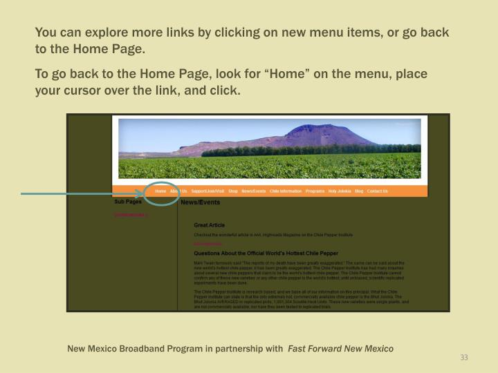You can explore more links by clicking on new menu items, or go back to the Home Page.