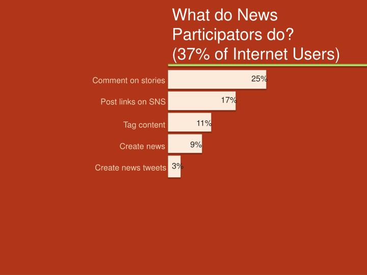 What do News Participators do?