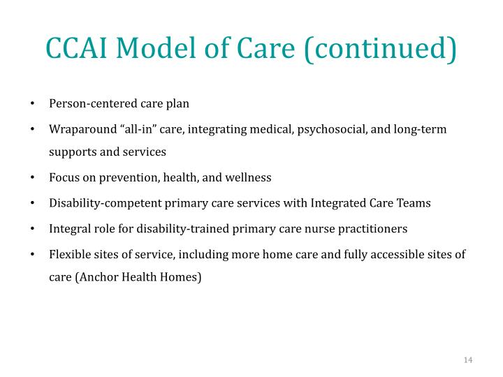 CCAI Model of Care (continued)