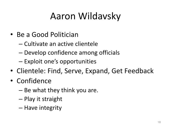 Aaron Wildavsky