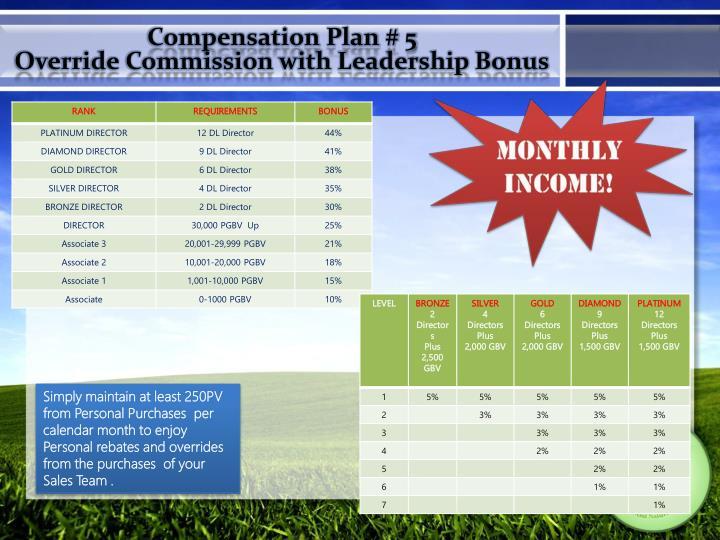 Compensation Plan # 5