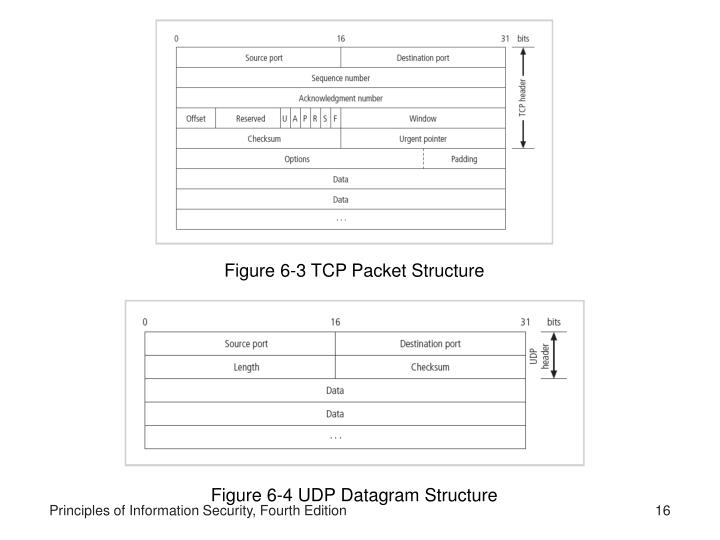 Figure 6-3 TCP Packet Structure